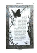 Página 517