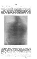 Página 599