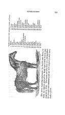 Seite 283