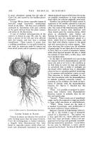 Página 302
