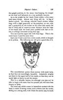 Página 105