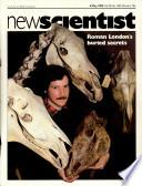 6 maio 1982