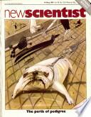 14 maio 1981