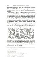 Página 336