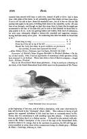 Página 2026