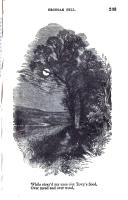 Página 233