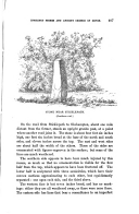Seite 407