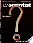 11 maio 1978
