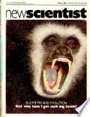 5 maio 1983