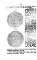 Página 412