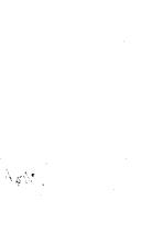 Página 882
