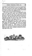 Seite 81