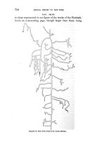 Página 718