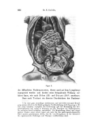 Página 862