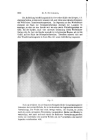 Página 966